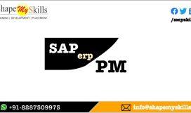 SAP PM TRAINING ONLINE IN NOIDA